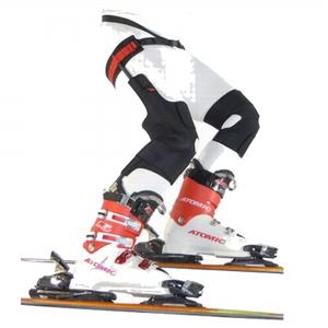 Ski Mojo