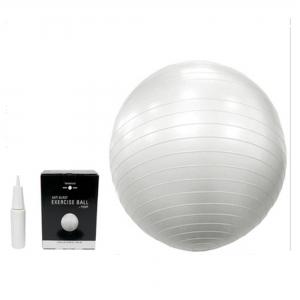 65cm Excercise Ball